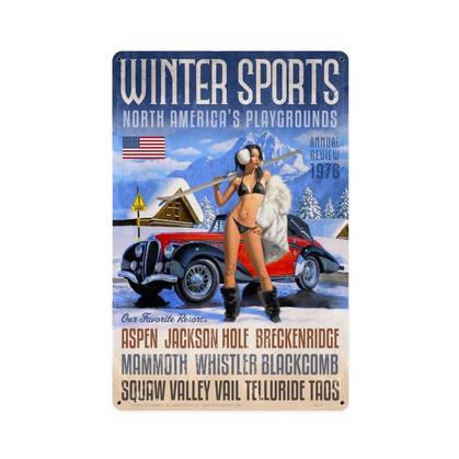 Winter Sports  **Shield Metal Sign**