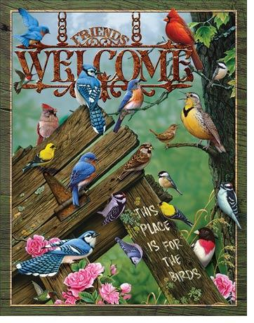 Friends Welcome - This place is for the birds