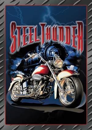 STEEL THINDER