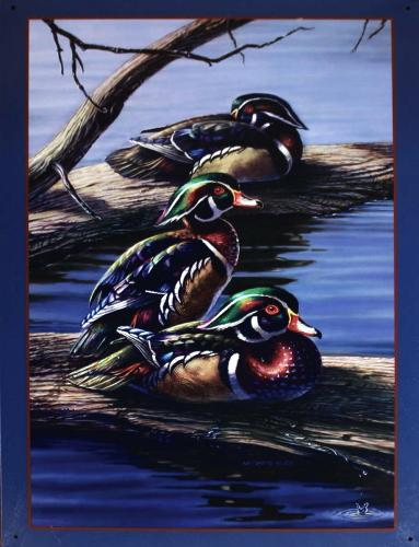 Metal sign DUCKS-BULK 12,5