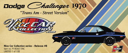 Dodge Challenger 1970 Trans Am - Street Version Nice Car Collection