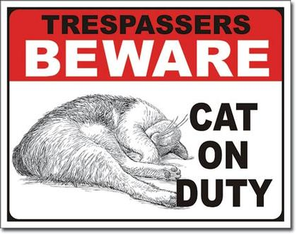 Trespassers Beware - Cat on Duty