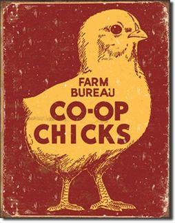 Farm Bureau - Co-Op Chicks