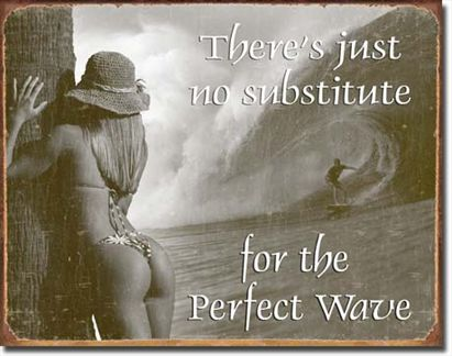 There's Just No Substitute For The Perfect Wave