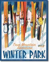 True Mountain Adventure WINTER PARK