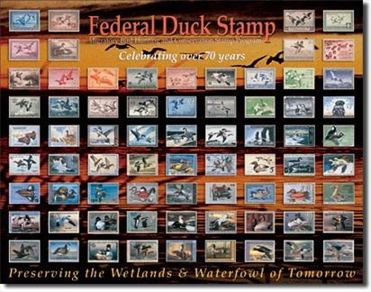 Federal Duck Stamp - Celebrating Over 70 Years