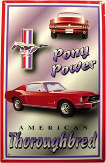 Mustang Pony Power American Thoroughbred