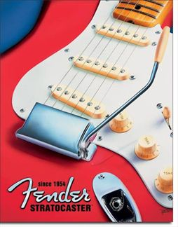 Fender - Stratocaster Since 1954