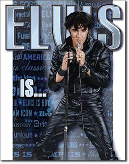 Elvis Is...